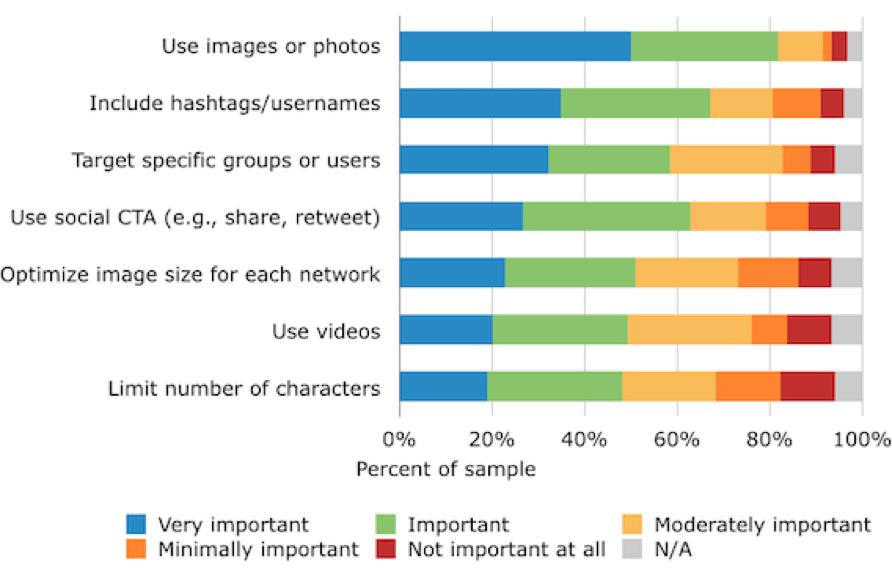 importanza immagini sui social media