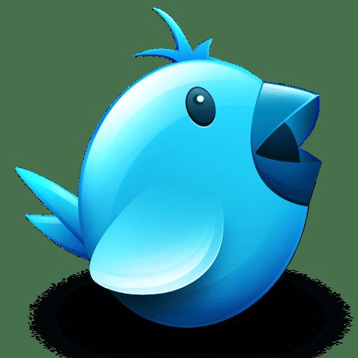servizi twitter