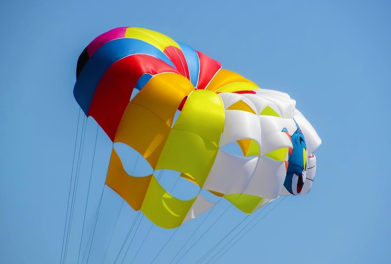 reputazione digitale: paracadute