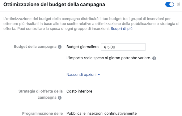budget campagna Facebook Ads